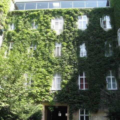 Robertgasse-1-Fassade-Innenhof-2_534.jpg